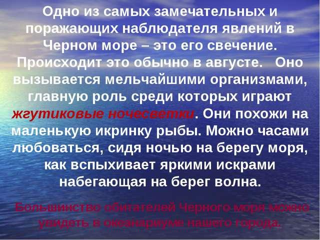 Одно из самых замечательных и поражающих наблюдателя явлений в Черном море –...