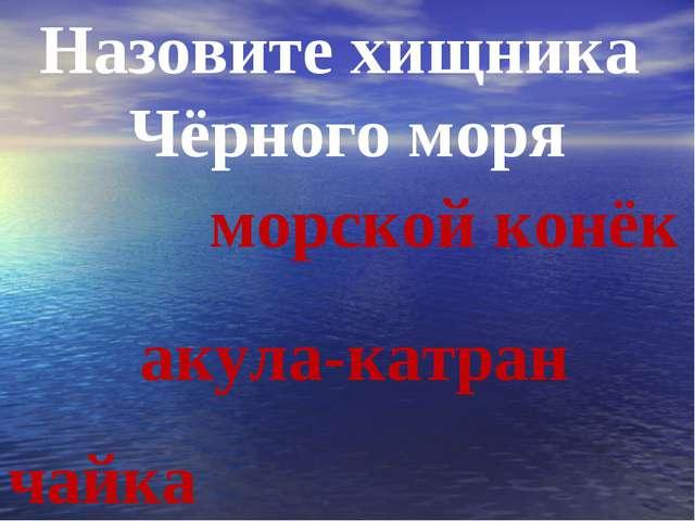 Назовите хищника Чёрного моря чайка морской конёк акула-катран