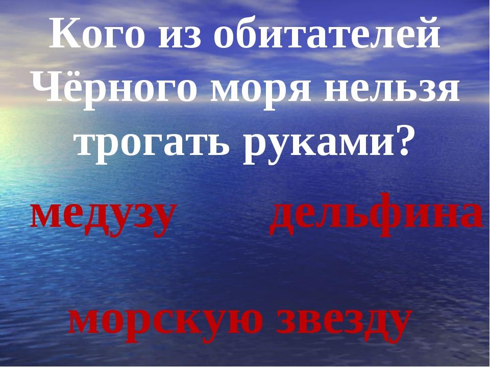 Кого из обитателей Чёрного моря нельзя трогать руками? медузу морскую звезду...