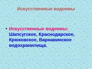 Искусственные водоемы Искусственные водоемы: Шапсугское, Краснодарское, Крюко