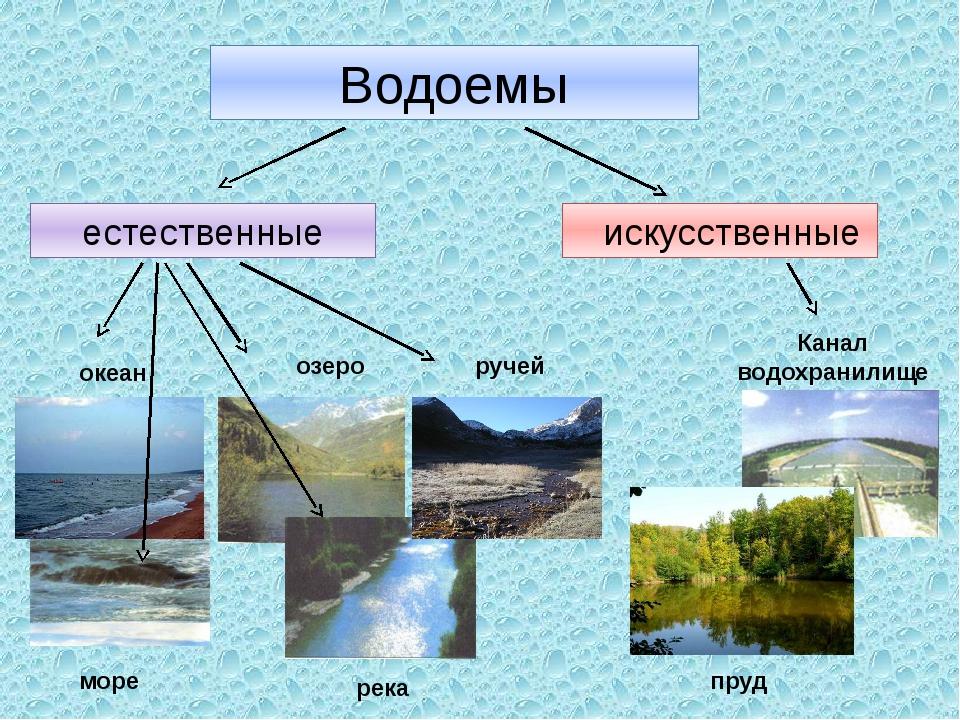 Водоемы естественные искусственные океан море озеро река ручей Канал водохран...