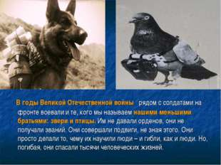 В годы Великой Отечественной войны рядом с солдатами на фронте воевали и те