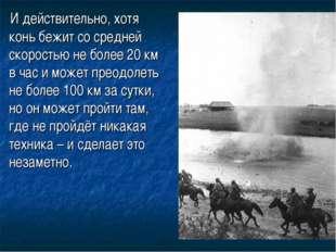 И действительно, хотя конь бежит со средней скоростью не более 20 км в ча