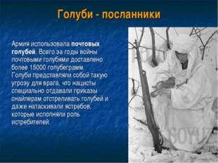 Голуби - посланники Армия использовала почтовых голубей. Всего за годы войны