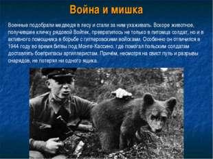 Война и мишка Военные подобрали медведя в лесу и стали за ним ухаживать. Вско