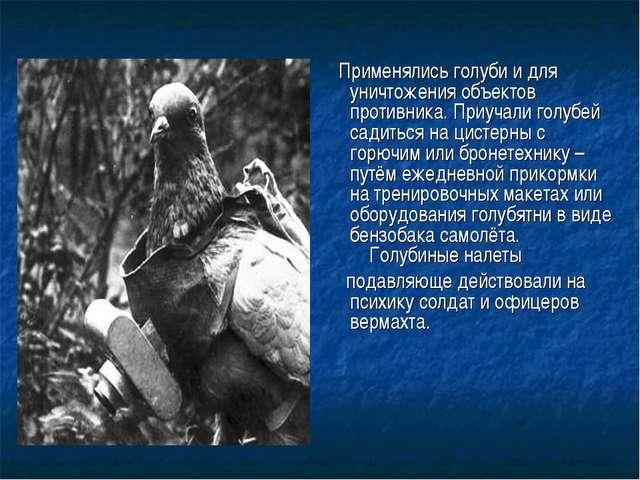 Применялись голуби и для уничтожения объектов противника.Приучали голубей с...