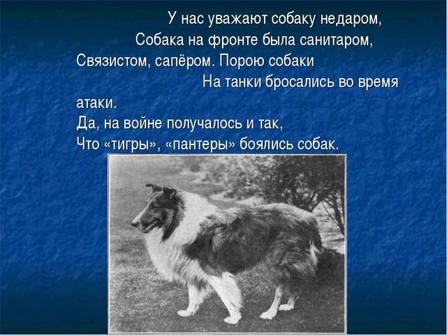 У нас уважают собаку недаром, Собака на фронте была санитаром, Связистом, са...