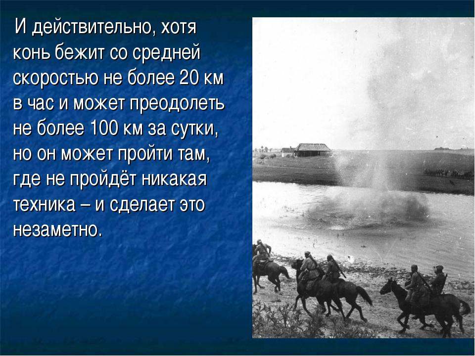 И действительно, хотя конь бежит со средней скоростью не более 20 км в ча...
