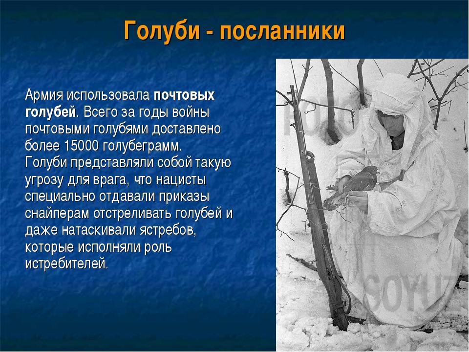 Голуби - посланники Армия использовала почтовых голубей. Всего за годы войны...