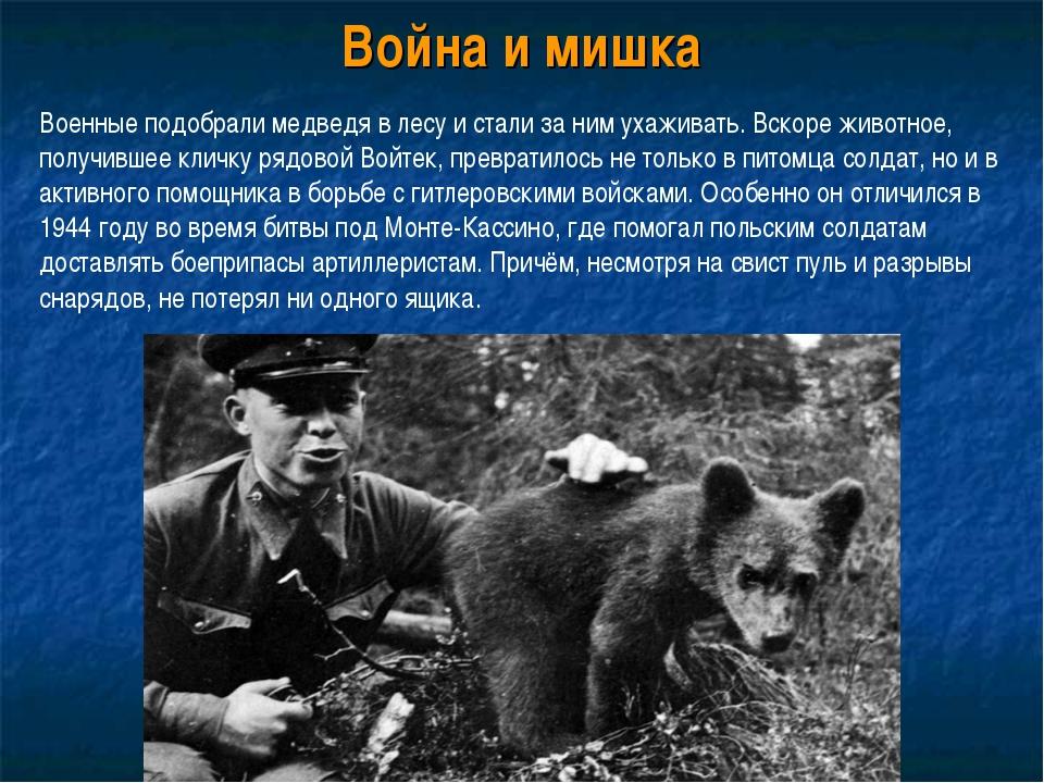 Война и мишка Военные подобрали медведя в лесу и стали за ним ухаживать. Вско...