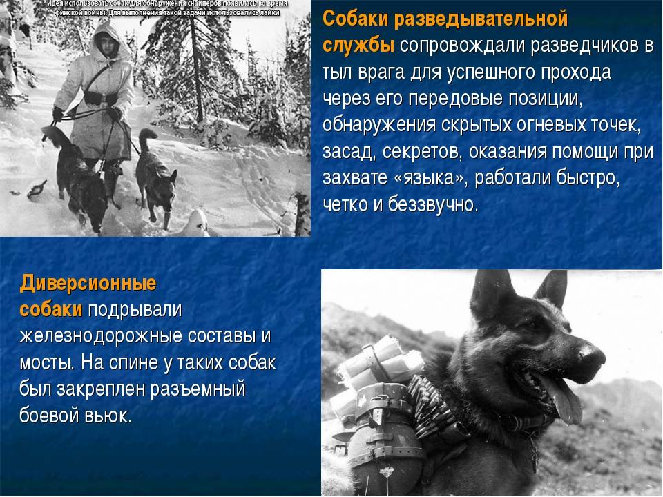. Собаки разведывательной службысопровождали разведчиков в тыл врага для усп...