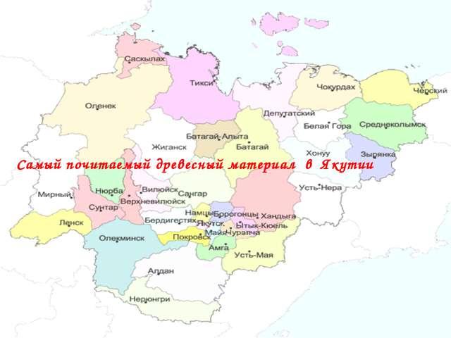Самый почитаемый древесный материал в Якутии