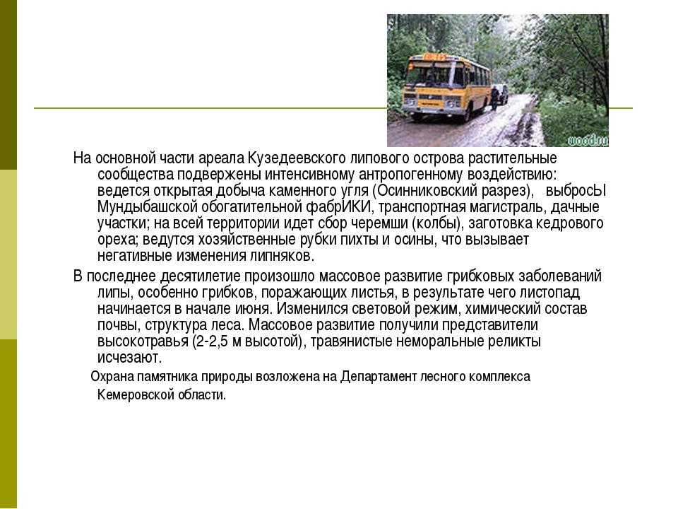На основной части ареала Кузедеевского липового острова растительные сообщест...