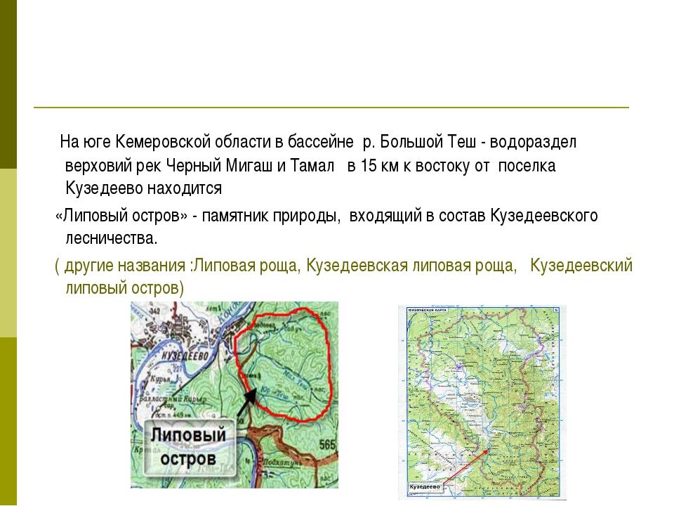 На юге Кемеровской области в бассейне р. Большой Теш - водораздел верховий р...