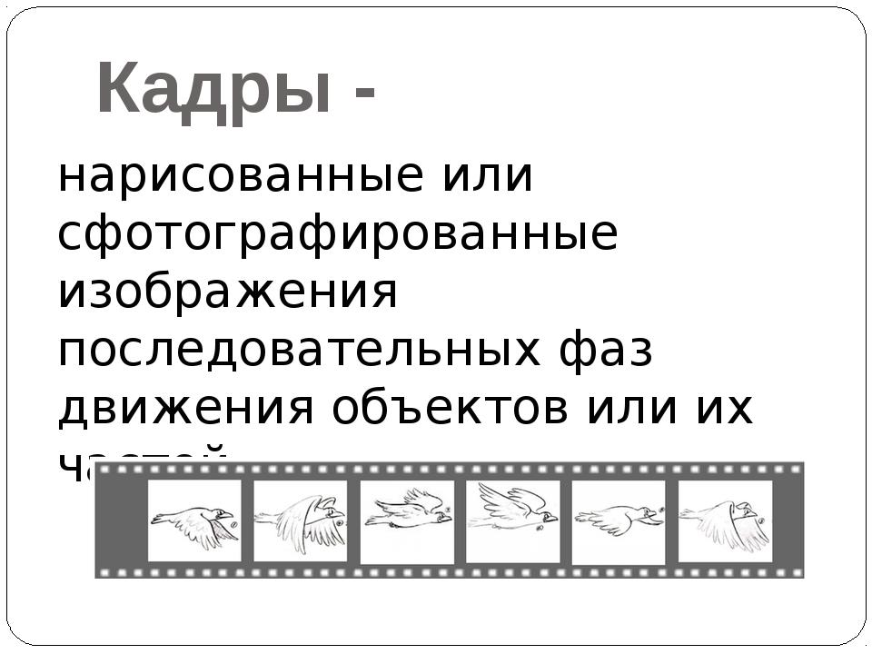 Кадры - нарисованные или сфотографированные изображения последовательных фаз...