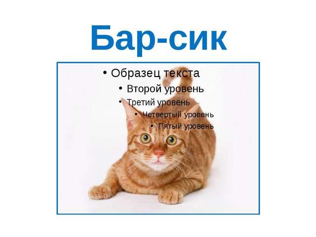 Бар-сик