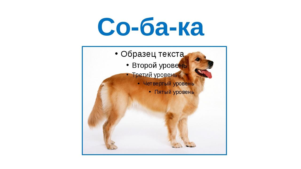 Со-ба-ка