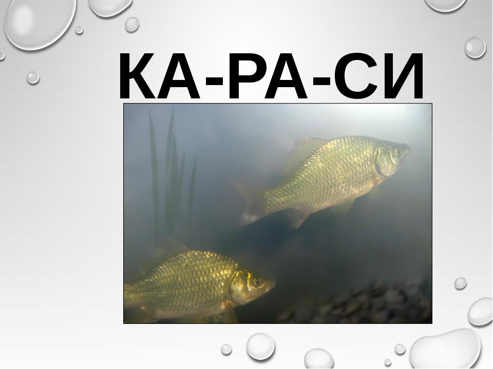 КА-РА-СИ