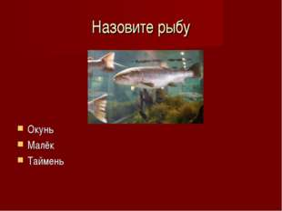 Назовите рыбу Окунь Малёк Таймень