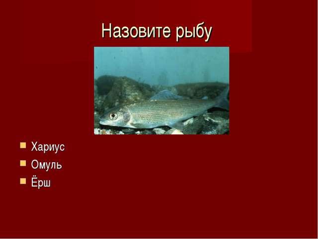 Назовите рыбу Хариус Омуль Ёрш