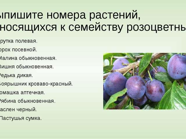 Выпишите номера растений, относящихся к семейству розоцветных 1.Ярутка полева...