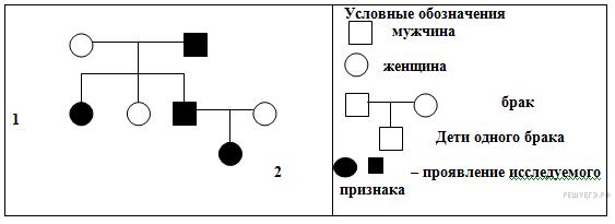 По изображённой на рисунке родословной установите характер проявления