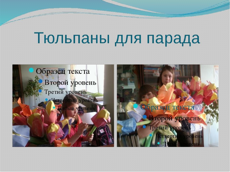 Тюльпаны для парада