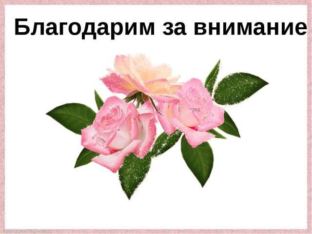 Благодарим за внимание FokinaLida.75@mail.ru