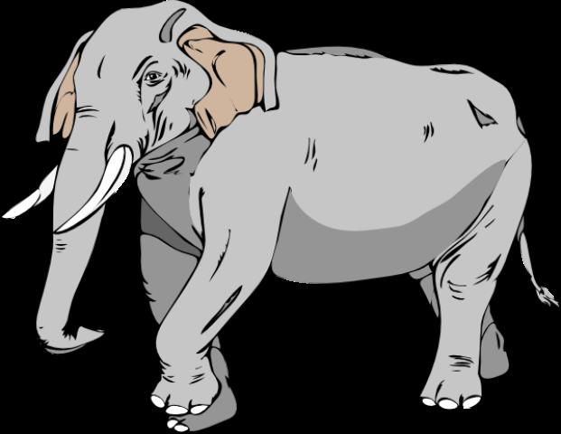http://900igr.net/datai/izo/Risovanie-slona/0002-002-Vy-ne-znaete-kak-narisovat-slona.png