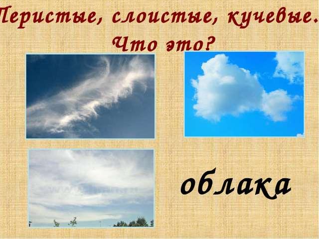 Перистые, слоистые, кучевые... Что это? облака