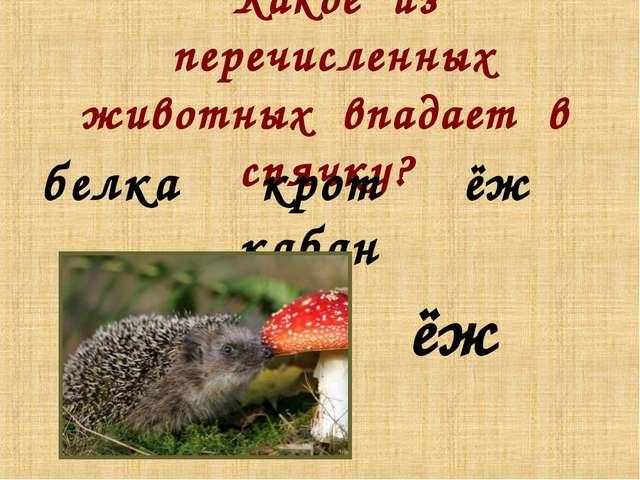 Какое из перечисленных животных впадает в спячку? ёж белка крот ёж кабан