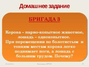 Домашнее задание * Красноярск, КТТПП БРИГАДА 3 Корова – парно-копытное животн