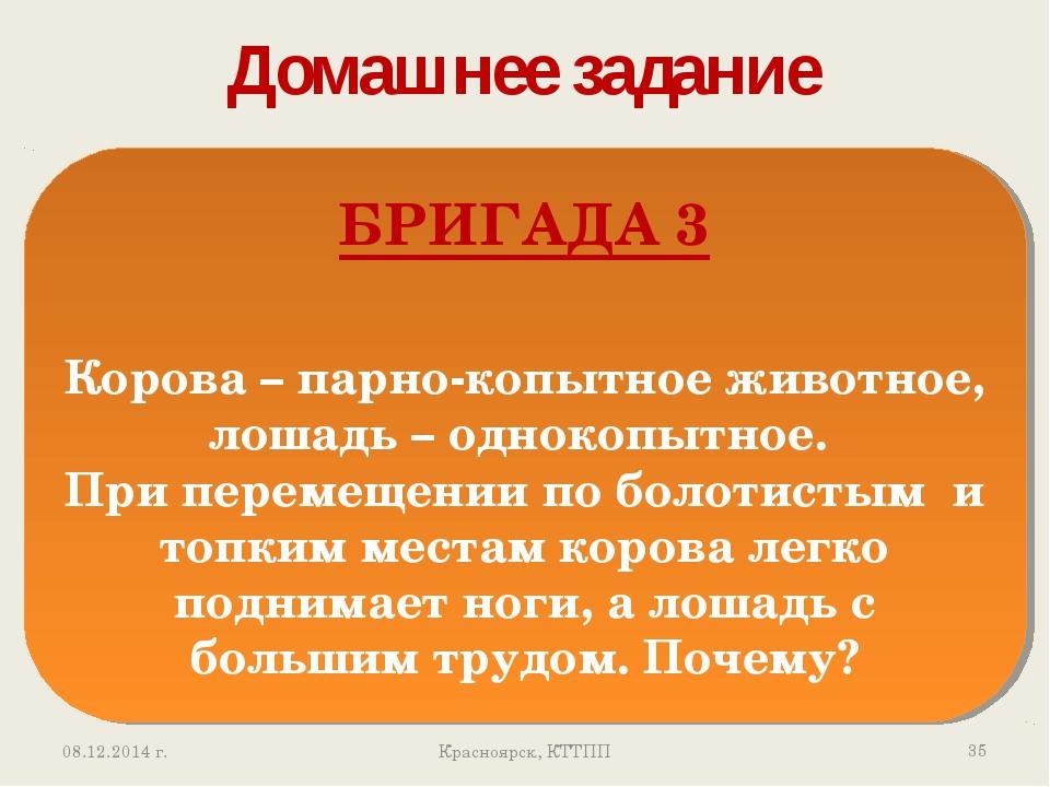 Домашнее задание * Красноярск, КТТПП БРИГАДА 3 Корова – парно-копытное животн...