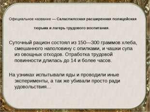 Официальное название — Саласпилсская расширенная полицейская тюрьма и лагерь