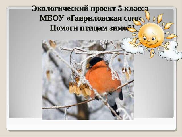 Экологический проект 5 класса МБОУ «Гавриловская сош» Помоги птицам зимой!