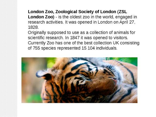 London Zoo, Zoological Society of London (ZSL London Zoo) - is the oldest zoo...