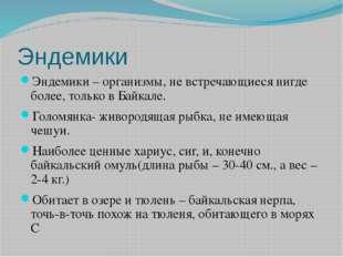 Эндемики Эндемики – организмы, не встречающиеся нигде более, только в Байкале