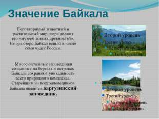 Значение Байкала Неповторимый животный и растительный мир озера делают его «м