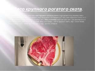 Мясо крупного рогатого скота. В зависимости от возраста животных мясо крупног
