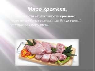 Мясо кролика. В зависимости от упитанности кроличье мясо имеет более светлый