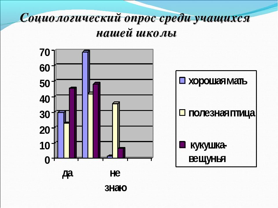 Социологический опрос среди учащихся нашей школы
