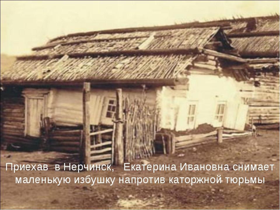 Приехав в Нерчинск, Екатерина Ивановна снимает маленькую избушку напротив кат...