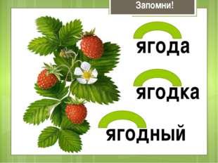 Запомни! ягода ягодка ягодный