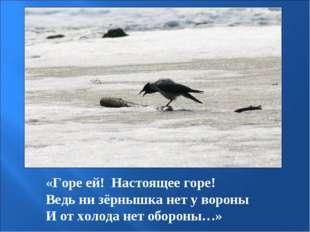 «Горе ей! Настоящее горе! Ведь ни зёрнышка нет у вороны И от холода нет оборо