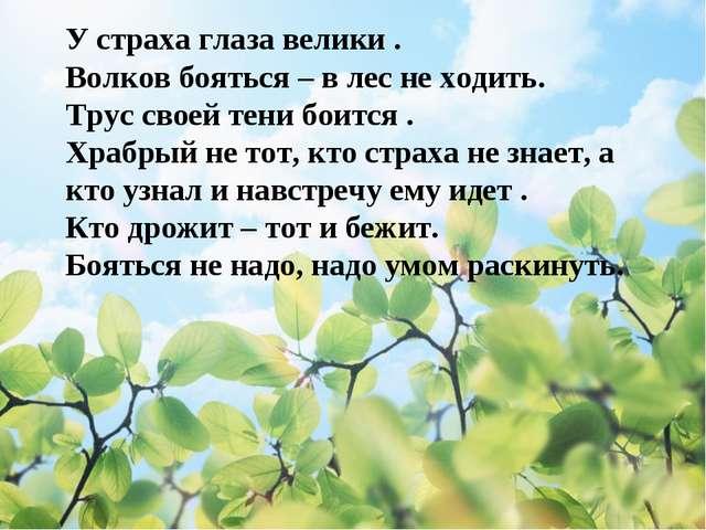 У страха глаза велики . Волков бояться – в лес не ходить. Трус своей тени бо...