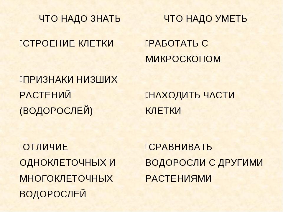 Презентация На Тему Водоросли 6 Класс