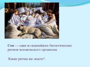 Сон— один из важнейших биологических ритмов человеческого организма Какие ри