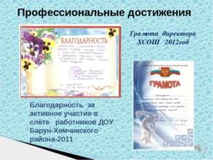 Профессиональные достижения Грамота директора ХСОШ 2012год Благодарность за а