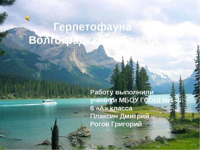 2 Герпетофауна Волгоградской области Работу выполнили ученики МБОУ ГСОШ №1 6...