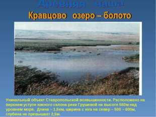 Уникальный объект Ставропольской возвышенности. Расположено на верхнем уступе